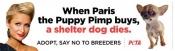Paris Hilton treated as puppy dealer
