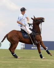 Prince Harry at Polo Cup in Brasil