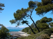 Win a water trip for Lerins Islands in Cannes