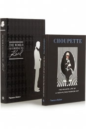 Choupette The Private Life of a High Flying Fashion Cat and The World According to Karl