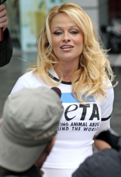 Pamela Anderson tells Marineland d'Antibes to set the whales free