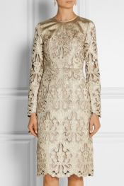 ERDEM Merete metallic broderie anglaise dress