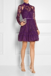 ELIE SAAB Paneled lace and silk-georgette mini dress