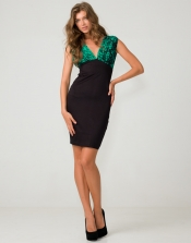 Plunge Neck Dress in Green and Black